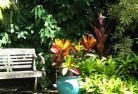 Adelaide Hills Tropical landscaping 11