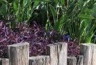 Adelaide Hills Tropical landscaping 3