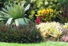 Adelaide Hills Tropical landscaping 9